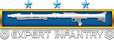 expert_infantry_badge12.png