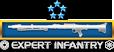 expert_infantry_badge14.png