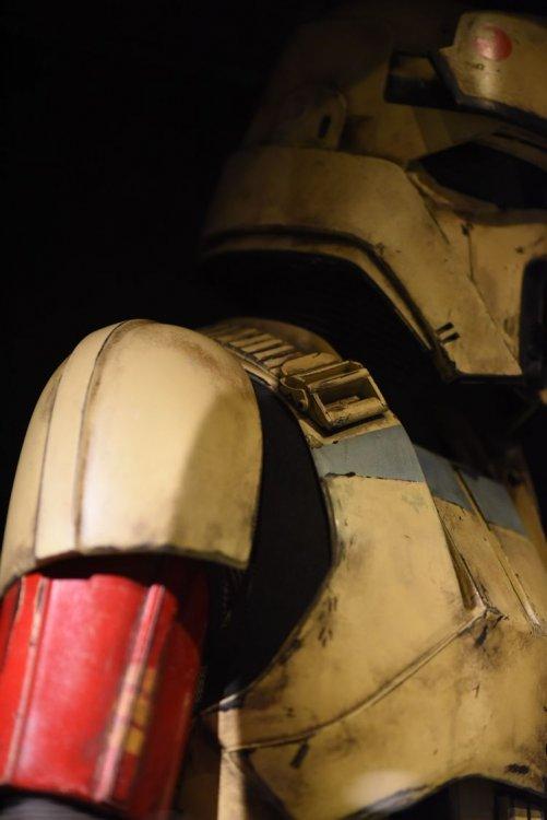 SMALL shoretrooper-armor-nick-durante-florida (58) .jpg