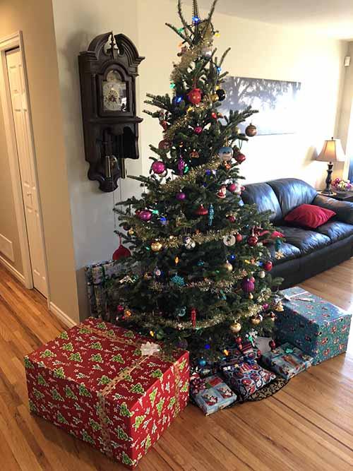 tree.jpg.67844ba4be03e26a27b9edebbb90821f.jpg