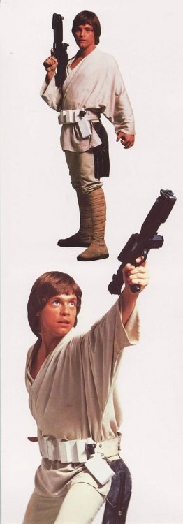 luke-skywalker-star-wars-chronic-1.thumb.jpg.d3aba84d7582bc696428c0d673cc2f8f.jpg