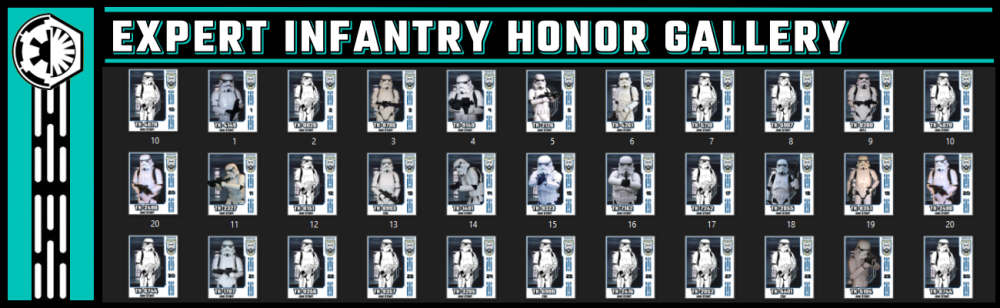 Expert Infantry Honor Gallery large.png